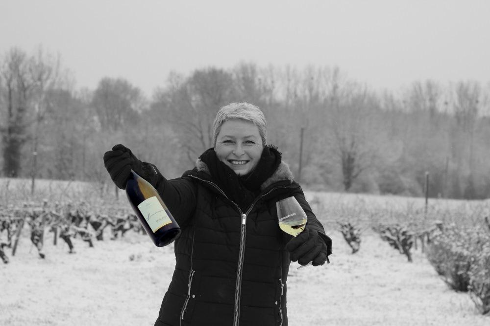 La vigne et le vin pou les nuls